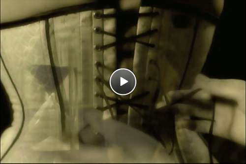 hamsters porn videos video